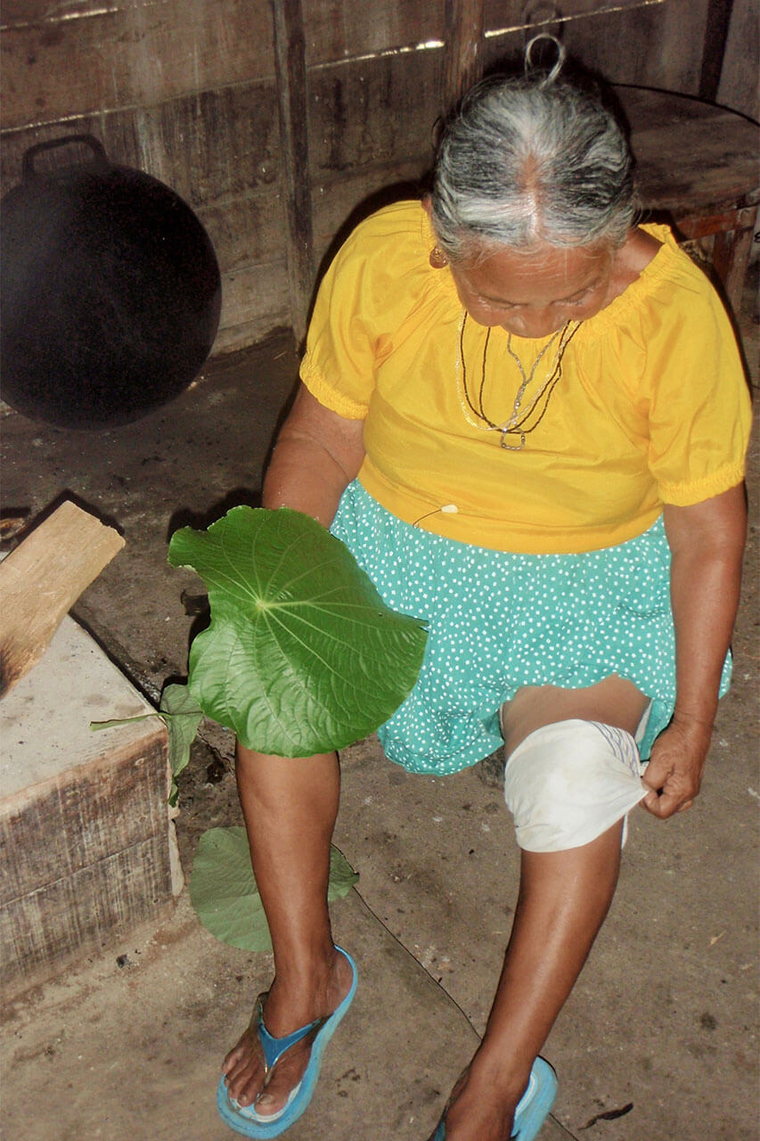 Mayan healer roasts leaf on the fire to demonstrate a technique for treating arthritis pain in Punta Gorda, Belize.